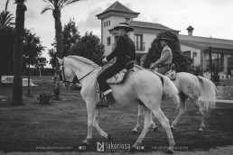 Pura raza española en la finca Yeguada Lagloria