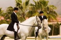 Jinetes y caballos en Yeguada Lagloria